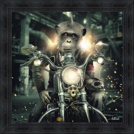 Tableau moderne Sylvain BINET Gorille moto 81x81 cm