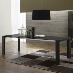 Table de séjour extensible « LUCERA » verre anthracite et pieds