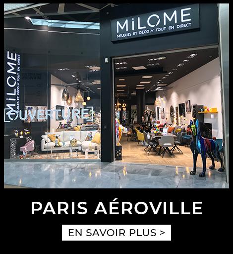 Agence Paris Aéroville