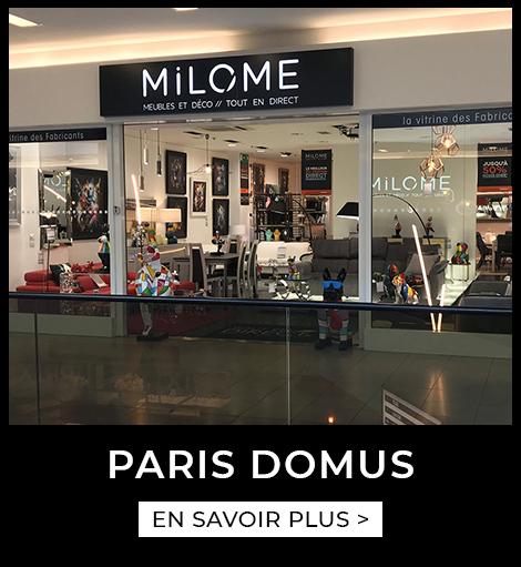 Agence Paris Domus