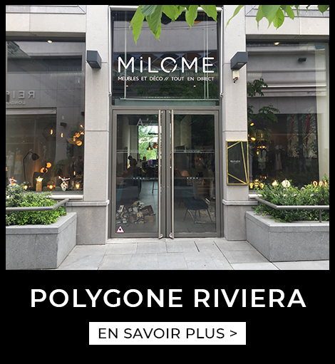Agence Polygone Riviera